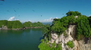 los haitises birds